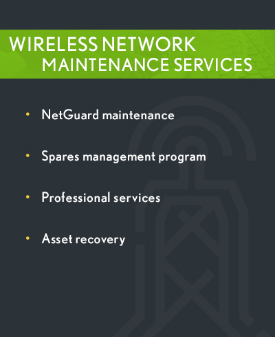 Wireless Network Carrier Services