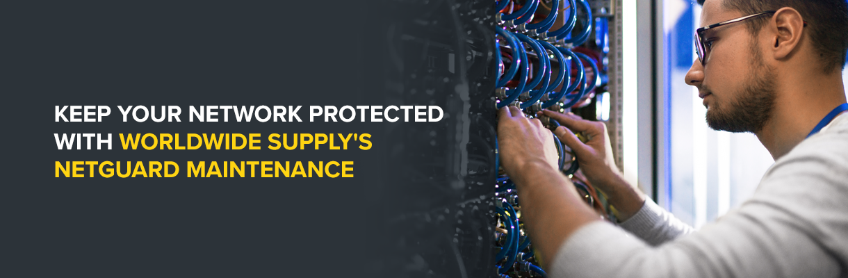 Worldwide Supply NetGuard Maintenance